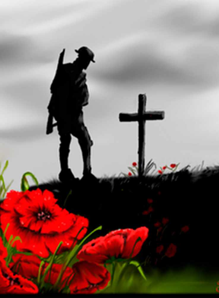 2017 Remembrance Day Poppy Campaign Cfwe