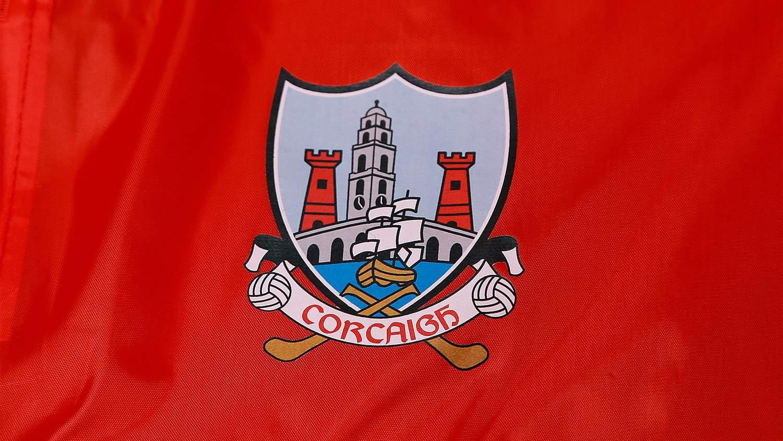 AUDIO - Cork 2-21 Clare 1-23