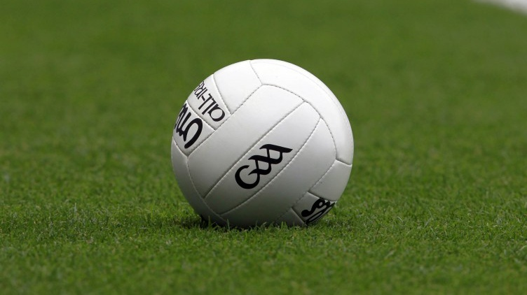 Several Dublin footballers take part in collective training session