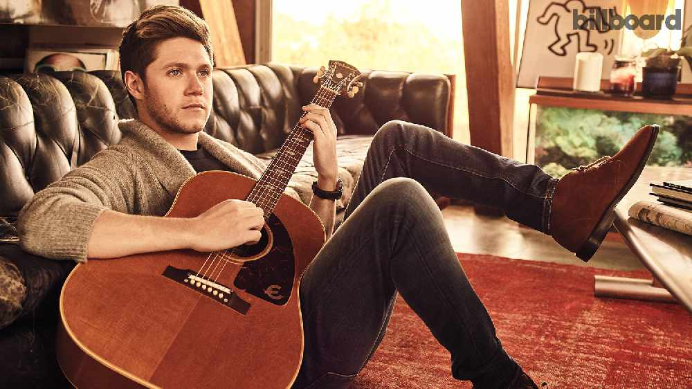 WATCH: Niall Horan Shares Video For Too Much To Ask