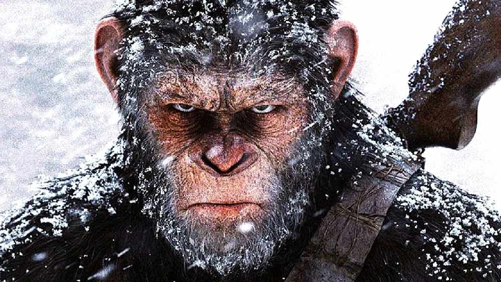 At The Flix: War for the Planet of the Apes, Cars 3 & The Beguiled