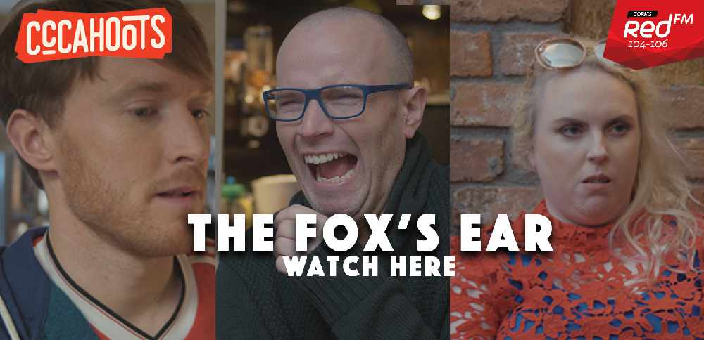 The Fox's Ear - CCCahoots