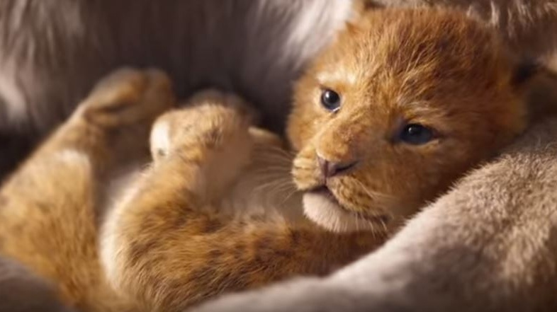 At The Flix: The Lion King, The Lehman Trilogy & Loopers: The Caddie's Long Walk