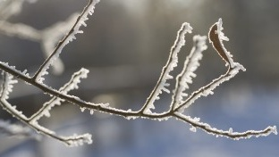Yellow snow-ice warning in place for Cork