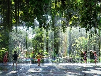 There's a rainforest at this years Muscat Festival!