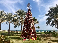 Christmas Tree Lights 2018