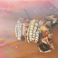 Taylor Swift's bracelets!