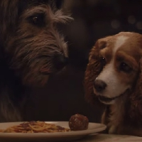 WATCH: Lady and the Tramp (NEW TRAILER)