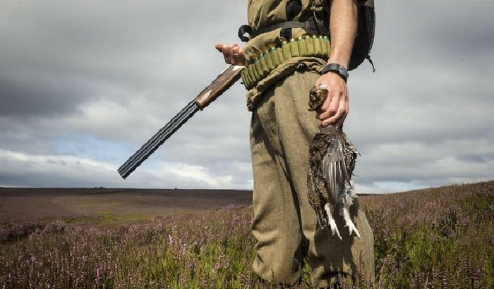 Councillors urged to end Ilkley grouse shooting