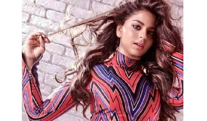 Shah Rukh Khan's daughter Suhana Khan to make her big Bollywood debut with this director?