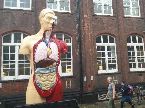 2d33436bf9fe Damien Hirst Sculpture In Norwich Receives Mixed Reviews - Radio Norwich