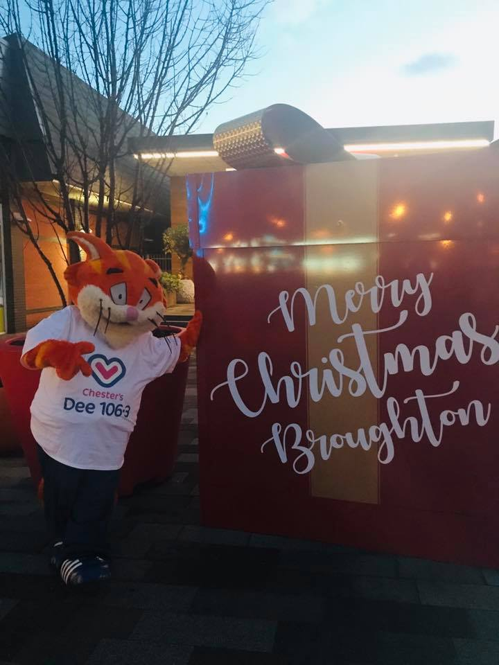 Jamie Stevens, Chester the Cat and the Dee Team at Broughton Shopping Park  for the Magical Wintery Launch!❄️