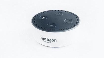 Amazon Elza