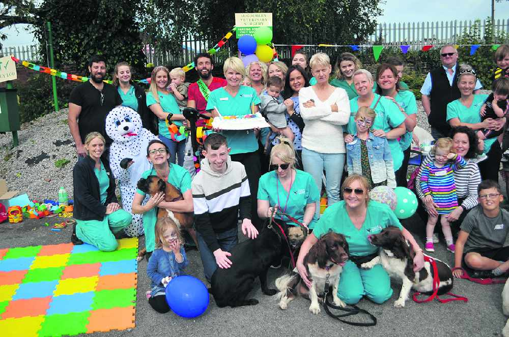 Anniversary boost for 'homeless' pets